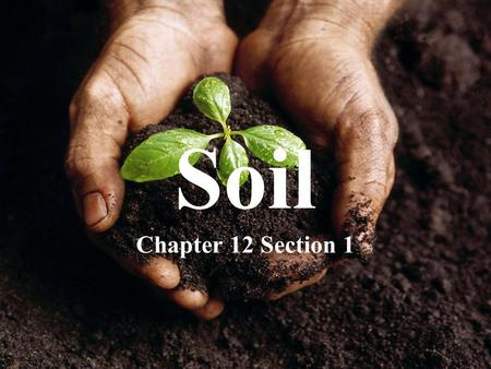 Soil Chapter 12 Section 1.