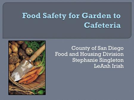 County of San Diego Food and Housing Division Stephanie Singleton LeAnh Irish.