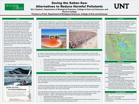 Essay on Biodiversity: Top 8 Essays | India | Biodiversity | Biology