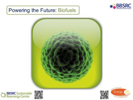 Powering the Future: Biofuels. Activity: Cellulase enzymes Describe the breakdown of cellulose by cellulases and cellulose producing microbes Carry out.