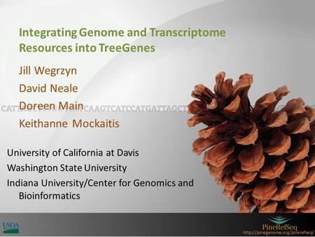 Integrating Genome and Transcriptome Resources into TreeGenes Jill Wegrzyn David Neale Doreen Main Keithanne Mockaitis.