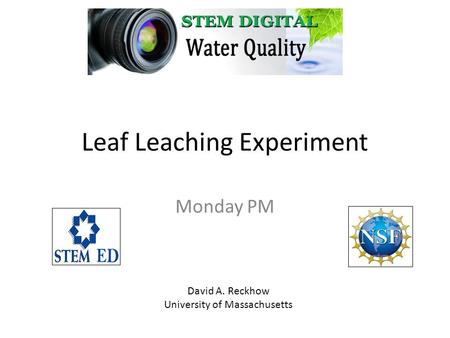 Leaf Leaching Experiment Monday PM David A. Reckhow University of Massachusetts.