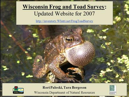 Wisconsin Frog and Toad Survey: Updated Website for 2007  Rori Paloski, Tara Bergeson Wisconsin Department of.