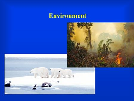 Environment. Of Polar Bears, Subsistence Farmers, Florida Residents, and Scientists   chst=m&vendor=&query=global+warming&submi.