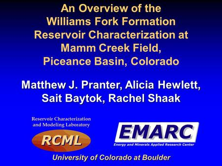 Williams Fork Formation Reservoir Characterization at