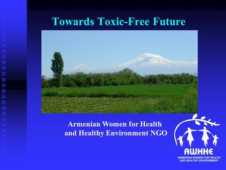 Towards Toxic-Free Future Armenian Women for Health and Healthy Environment NGO.