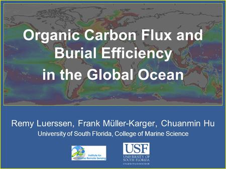 Organic Carbon Flux and Burial Efficiency in the Global Ocean Remy Luerssen, Frank Müller-Karger, Chuanmin Hu University of South Florida, College of.