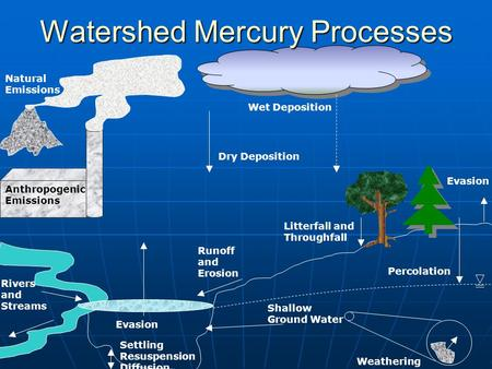 Anthropogenic Emissions Wet Deposition Dry Deposition Evasion Watershed Mercury Processes Natural Emissions Percolation Shallow Ground Water Settling Resuspension.