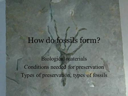 How do fossils form? Biological materials Conditions needed for preservation Types of preservation, types of fossils.