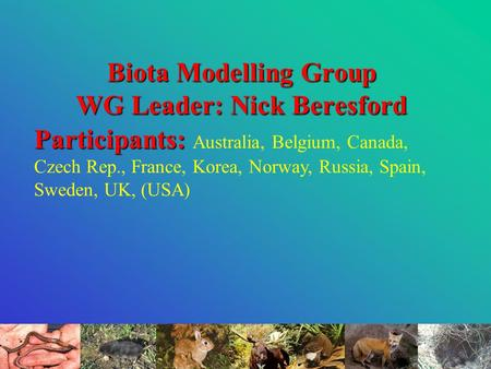Biota Modelling Group WG Leader: Nick Beresford Participants: Participants: Australia, Belgium, Canada, Czech Rep., France, Korea, Norway, Russia, Spain,