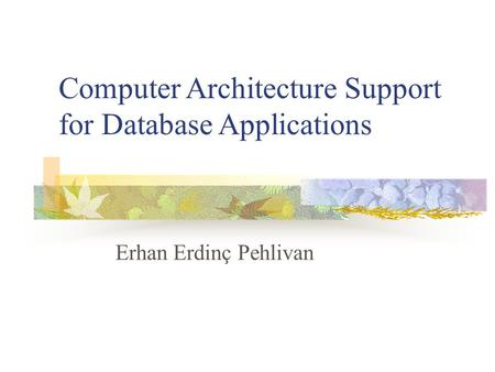 Erhan Erdinç Pehlivan Computer Architecture Support for Database Applications.