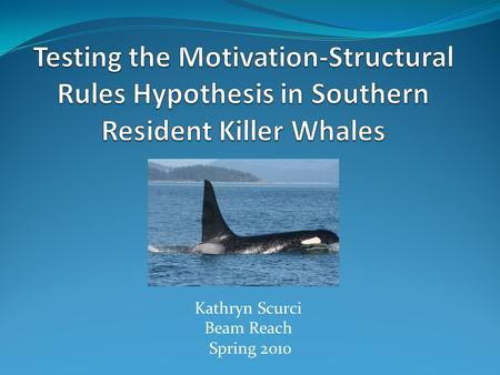 Kathryn Scurci Beam Reach Spring 2010. Background 3 pods of Southern resident killer whales (J, K, and L) 3 types of phonations: Clicks Whistles Pulsed.