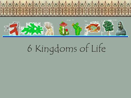 6 Kingdoms of Life. All organisms are classified into one of the following 6 kingdoms. Archaebacteria – bacteria that live in harsh conditions Eubacteria.