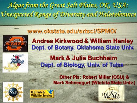 Algae from the Great Salt Plains, OK, USA: Unexpected Range of Diversity and Halotolerance Andrea Kirkwood & William Henley Dept. of Botany, Oklahoma State.