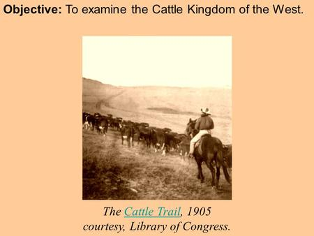Objective: To examine the Cattle Kingdom of the West. The Cattle Trail, 1905 courtesy, Library of Congress.Cattle Trail.