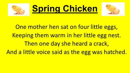 Spring Chicken One mother hen sat on four little eggs, Keeping them warm in her little egg nest. Then one day she heard a crack, And a little voice said.