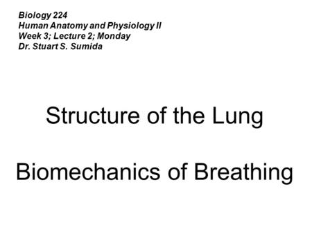 Biology 224 Human Anatomy and Physiology II Week 3; Lecture 2; Monday Dr. Stuart S. Sumida Structure of the Lung Biomechanics of Breathing.