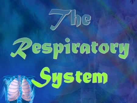 Essential Questions What are the major systems of the human body? How does the Respiratory System help my body function? What are the major parts of.