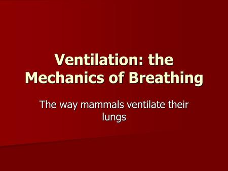 Ventilation: the Mechanics of Breathing