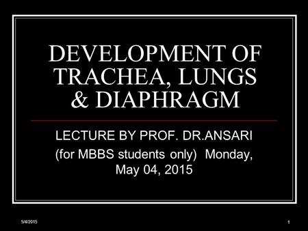 5/4/2015 1 DEVELOPMENT OF TRACHEA, LUNGS & DIAPHRAGM LECTURE BY PROF. DR.ANSARI (for MBBS students only) Monday, May 04, 2015 Monday, May 04, 2015.