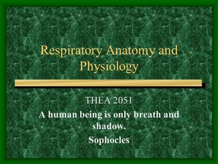Respiratory Anatomy and Physiology THEA 2051 A human being is only breath and shadow. Sophocles.