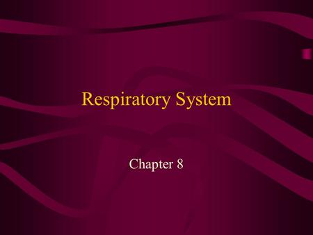 Respiratory System Chapter 8. Functions of the Respiratory System Breathing process Exchange of Oxygen and Carbon Dioxide Enable speech production.