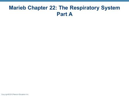 Copyright © 2010 Pearson Education, Inc. Marieb Chapter 22: The Respiratory System Part A.