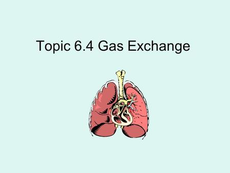 Topic 6.4 Gas Exchange. 6.4.1 distinguish between: Ventilation – breathing (air in and out of lungs) Gas Exchange – diffusion of gases. Occurs in 2 places: