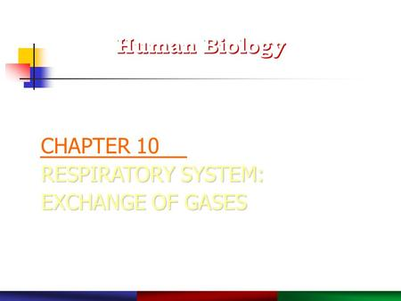 Copyright © 2003 Pearson Education, Inc. publishing as Benjamin Cummings. RESPIRATORY SYSTEM: EXCHANGE OF GASES CHAPTER 10 RESPIRATORY SYSTEM: EXCHANGE.