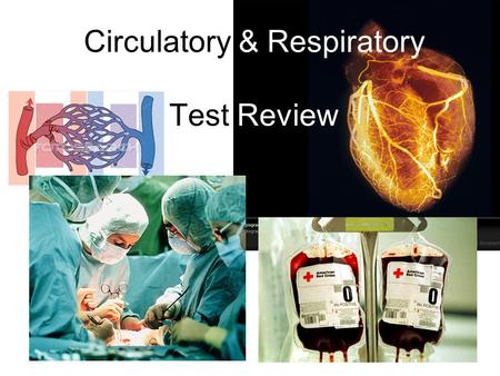 Circulatory & Respiratory Test Review. The chambers of the heart that pump blood to the lungs and the rest of the body? A)Capillaries B)Ventricles C)Atria.