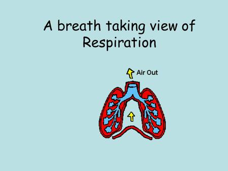A breath taking view of Respiration. Respiratory System: Primary function is to obtain oxygen for use by body's cells & eliminate carbon dioxide that.