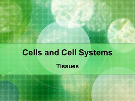 Cells and Cell Systems Tissues. What are tissues? Tissues are groups of cells that perform the same function and have a similar structure.
