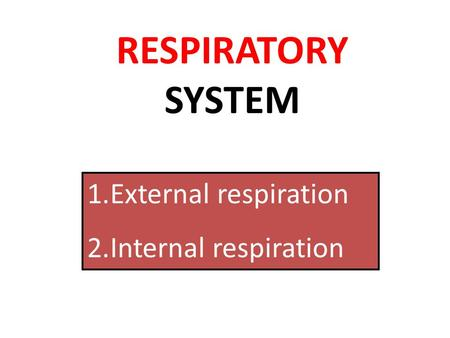 RESPIRATORY SYSTEM External respiration Internal respiration.