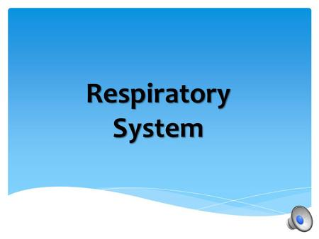 Respiratory System What are some of the organs and what is the function of our respiratory system? Respiratory System.