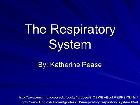 The Respiratory System By: Katherine Pease