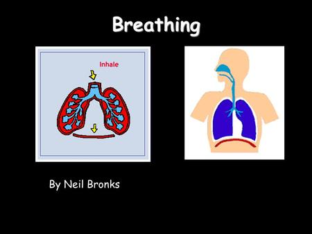 Breathing By Neil Bronks. 09:55Breathing The big muscle that pulls the lungs down and pushes out the air is called the diaphragm The rib muscles help.