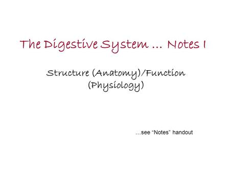The Digestive System … Notes I