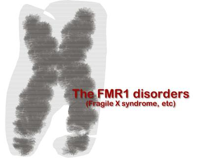 The FMR1 disorders (Fragile X syndrome, etc). Mary Beth Busby founding board member of the Fragile X Research Foundation (FRAXA) Walter Kaufmann Director,
