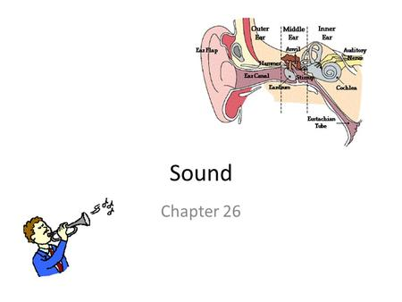 Sound Chapter 26. Sound Sound is a mechanical wave which is created by a vibrating object. The vibrations of the particles in sound waves are best described.