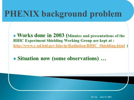 Works done in 2003 ( Minutes and presentations of the RHIC Experiment Shielding Working Group are kept at :
