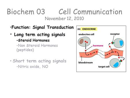 Biochem 03 Cell Communication November 12, 2010 Function: Signal Transduction Long term acting signals – –Steroid Hormones – –Non Steroid Hormones (peptides)