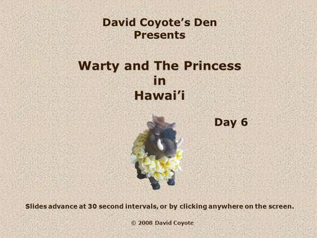 © 2008 David Coyote David Coyote's Den Presents Warty and The Princess in Hawai'i Slides advance at 30 second intervals, or by clicking anywhere on the.