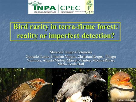 1 Bird rarity in terra-firme forest: reality or imperfect detection? Marconi Campos Cerqueira Gonçalo Ferraz, Claudeir Vargas, Christian Borges, Thiago.