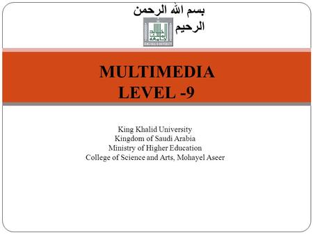 1 Introduction to Computer Science بسم الله الرحمن الرحيم MULTIMEDIA LEVEL -9 King Khalid University Kingdom of Saudi Arabia Ministry of Higher Education.