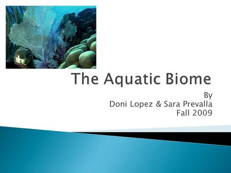 By Doni Lopez & Sara Prevalla Fall 2009. Come join me in a tour of my home, the Aquatic biome. While the ocean makes up about 72% and freshwater is 3%