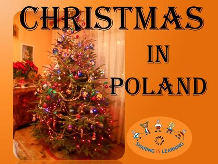 CHRISTMAS IN POLAND. Before Christmas Christmas Tree In Poland before Christmas people decorate the tree with handmade Christmas balls, lights and ornamentation.