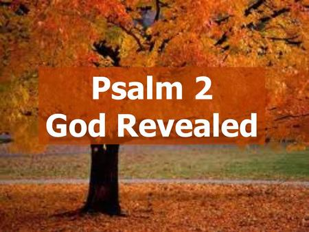 "Psalm 2 God Revealed. ""Revelation""  New Testament references  More possible  Point us to Jesus Messianic Psalms."