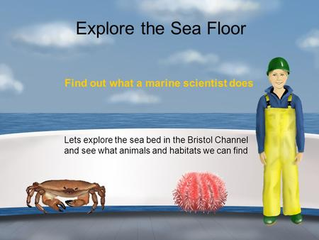 Explore the Sea Floor Find out what a marine scientist does Lets explore the sea bed in the Bristol Channel and see what animals and habitats we can find.