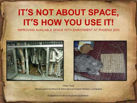IT'S NOT ABOUT SPACE, IT'S HOW YOU USE IT! IMPROVING AVAILABLE SPACE WITH ENRICHMENT AT PHOENIX ZOO Hilda Tresz Behavioral Enrichment & International.