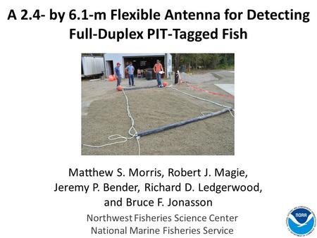A 2.4- by 6.1-m Flexible Antenna for Detecting Full-Duplex PIT-Tagged Fish Matthew S. Morris, Robert J. Magie, Jeremy P. Bender, Richard D. Ledgerwood,